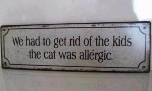 ALLERGIC CATS